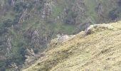Randonnée Marche STOSSWIHR -  68 Sentier des roches - Photo 1