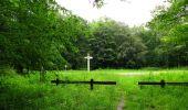 Randonnée Marche SAINT-JEAN-AUX-BOIS - en forêt de Compiègne_6_les Grands Monts_la route tournante sur la tête St-Jean - Photo 26