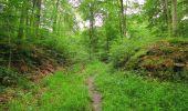 Randonnée Marche SAINT-JEAN-AUX-BOIS - en forêt de Compiègne_6_les Grands Monts_la route tournante sur la tête St-Jean - Photo 23