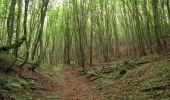 Randonnée Marche SAINT-JEAN-AUX-BOIS - en forêt de Compiègne_6_les Grands Monts_la route tournante sur la tête St-Jean - Photo 53