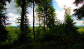 Randonnée Marche SAINT-JEAN-AUX-BOIS - en forêt de Compiègne_6_les Grands Monts_la route tournante sur la tête St-Jean - Photo 182