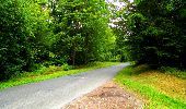 Randonnée Marche SAINT-JEAN-AUX-BOIS - en forêt de Compiègne_6_les Grands Monts_la route tournante sur la tête St-Jean - Photo 117
