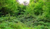 Randonnée Marche SAINT-JEAN-AUX-BOIS - en forêt de Compiègne_6_les Grands Monts_la route tournante sur la tête St-Jean - Photo 149
