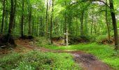 Randonnée Marche SAINT-JEAN-AUX-BOIS - en forêt de Compiègne_6_les Grands Monts_la route tournante sur la tête St-Jean - Photo 19