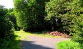 Randonnée Marche SAINT-JEAN-AUX-BOIS - en forêt de Compiègne_6_les Grands Monts_la route tournante sur la tête St-Jean - Photo 159