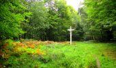 Randonnée Marche SAINT-JEAN-AUX-BOIS - en forêt de Compiègne_6_les Grands Monts_la route tournante sur la tête St-Jean - Photo 74