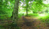 Randonnée Marche SAINT-JEAN-AUX-BOIS - en forêt de Compiègne_6_les Grands Monts_la route tournante sur la tête St-Jean - Photo 4