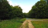Randonnée Marche SAINT-JEAN-AUX-BOIS - en forêt de Compiègne_6_les Grands Monts_la route tournante sur la tête St-Jean - Photo 110