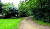 Randonnée Marche SAINT-JEAN-AUX-BOIS - en forêt de Compiègne_6_les Grands Monts_la route tournante sur la tête St-Jean - Photo 102