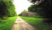 Randonnée Marche SAINT-JEAN-AUX-BOIS - en forêt de Compiègne_6_les Grands Monts_la route tournante sur la tête St-Jean - Photo 89