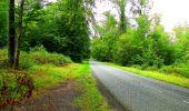 Randonnée Marche SAINT-JEAN-AUX-BOIS - en forêt de Compiègne_6_les Grands Monts_la route tournante sur la tête St-Jean - Photo 155