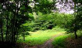 Randonnée Marche SAINT-JEAN-AUX-BOIS - en forêt de Compiègne_6_les Grands Monts_la route tournante sur la tête St-Jean - Photo 133