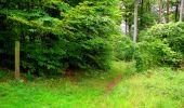 Randonnée Marche SAINT-JEAN-AUX-BOIS - en forêt de Compiègne_6_les Grands Monts_la route tournante sur la tête St-Jean - Photo 131