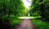 Randonnée Marche SAINT-JEAN-AUX-BOIS - en forêt de Compiègne_6_les Grands Monts_la route tournante sur la tête St-Jean - Photo 97