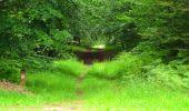 Randonnée Marche SAINT-JEAN-AUX-BOIS - en forêt de Compiègne_6_les Grands Monts_la route tournante sur la tête St-Jean - Photo 39