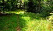 Randonnée Marche SAINT-JEAN-AUX-BOIS - en forêt de Compiègne_6_les Grands Monts_la route tournante sur la tête St-Jean - Photo 178