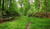 Randonnée Marche SAINT-JEAN-AUX-BOIS - en forêt de Compiègne_6_les Grands Monts_la route tournante sur la tête St-Jean - Photo 21