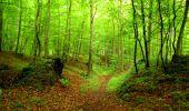 Randonnée Marche SAINT-JEAN-AUX-BOIS - en forêt de Compiègne_6_les Grands Monts_la route tournante sur la tête St-Jean - Photo 35