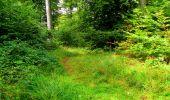 Randonnée Marche SAINT-JEAN-AUX-BOIS - en forêt de Compiègne_6_les Grands Monts_la route tournante sur la tête St-Jean - Photo 177