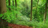 Randonnée Marche SAINT-JEAN-AUX-BOIS - en forêt de Compiègne_6_les Grands Monts_la route tournante sur la tête St-Jean - Photo 25
