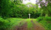 Randonnée Marche SAINT-JEAN-AUX-BOIS - en forêt de Compiègne_6_les Grands Monts_la route tournante sur la tête St-Jean - Photo 125