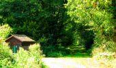 Randonnée Marche SAINT-JEAN-AUX-BOIS - en forêt de Compiègne_6_les Grands Monts_la route tournante sur la tête St-Jean - Photo 160