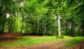 Randonnée Marche SAINT-JEAN-AUX-BOIS - en forêt de Compiègne_6_les Grands Monts_la route tournante sur la tête St-Jean - Photo 175