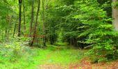 Randonnée Marche SAINT-JEAN-AUX-BOIS - en forêt de Compiègne_6_les Grands Monts_la route tournante sur la tête St-Jean - Photo 169