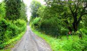Randonnée Marche SAINT-JEAN-AUX-BOIS - en forêt de Compiègne_6_les Grands Monts_la route tournante sur la tête St-Jean - Photo 2