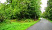 Randonnée Marche SAINT-JEAN-AUX-BOIS - en forêt de Compiègne_6_les Grands Monts_la route tournante sur la tête St-Jean - Photo 16