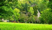 Randonnée Marche SAINT-JEAN-AUX-BOIS - en forêt de Compiègne_6_les Grands Monts_la route tournante sur la tête St-Jean - Photo 121