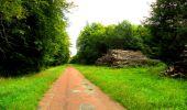 Randonnée Marche SAINT-JEAN-AUX-BOIS - en forêt de Compiègne_6_les Grands Monts_la route tournante sur la tête St-Jean - Photo 92