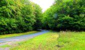 Randonnée Marche SAINT-JEAN-AUX-BOIS - en forêt de Compiègne_6_les Grands Monts_la route tournante sur la tête St-Jean - Photo 111
