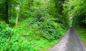 Randonnée Marche SAINT-JEAN-AUX-BOIS - en forêt de Compiègne_6_les Grands Monts_la route tournante sur la tête St-Jean - Photo 1