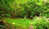 Randonnée Marche SAINT-JEAN-AUX-BOIS - en forêt de Compiègne_6_les Grands Monts_la route tournante sur la tête St-Jean - Photo 140