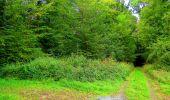 Randonnée Marche SAINT-JEAN-AUX-BOIS - en forêt de Compiègne_6_les Grands Monts_la route tournante sur la tête St-Jean - Photo 104