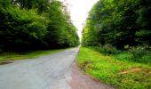 Randonnée Marche SAINT-JEAN-AUX-BOIS - en forêt de Compiègne_6_les Grands Monts_la route tournante sur la tête St-Jean - Photo 100
