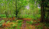 Randonnée Marche SAINT-JEAN-AUX-BOIS - en forêt de Compiègne_6_les Grands Monts_la route tournante sur la tête St-Jean - Photo 7