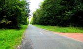 Randonnée Marche SAINT-JEAN-AUX-BOIS - en forêt de Compiègne_6_les Grands Monts_la route tournante sur la tête St-Jean - Photo 88