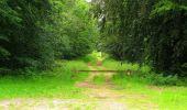 Randonnée Marche SAINT-JEAN-AUX-BOIS - en forêt de Compiègne_6_les Grands Monts_la route tournante sur la tête St-Jean - Photo 40