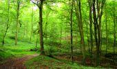 Randonnée Marche SAINT-JEAN-AUX-BOIS - en forêt de Compiègne_6_les Grands Monts_la route tournante sur la tête St-Jean - Photo 48