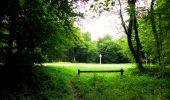 Randonnée Marche SAINT-JEAN-AUX-BOIS - en forêt de Compiègne_6_les Grands Monts_la route tournante sur la tête St-Jean - Photo 67