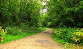 Randonnée Marche SAINT-JEAN-AUX-BOIS - en forêt de Compiègne_6_les Grands Monts_la route tournante sur la tête St-Jean - Photo 116