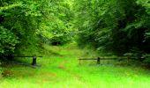Randonnée Marche SAINT-JEAN-AUX-BOIS - en forêt de Compiègne_6_les Grands Monts_la route tournante sur la tête St-Jean - Photo 71