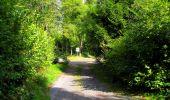 Randonnée Marche SAINT-JEAN-AUX-BOIS - en forêt de Compiègne_6_les Grands Monts_la route tournante sur la tête St-Jean - Photo 158