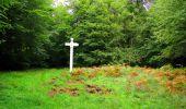 Randonnée Marche SAINT-JEAN-AUX-BOIS - en forêt de Compiègne_6_les Grands Monts_la route tournante sur la tête St-Jean - Photo 77