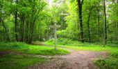 Randonnée Marche SAINT-JEAN-AUX-BOIS - en forêt de Compiègne_6_les Grands Monts_la route tournante sur la tête St-Jean - Photo 54