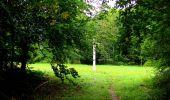 Randonnée Marche SAINT-JEAN-AUX-BOIS - en forêt de Compiègne_6_les Grands Monts_la route tournante sur la tête St-Jean - Photo 45