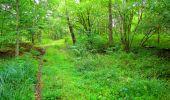 Randonnée Marche SAINT-JEAN-AUX-BOIS - en forêt de Compiègne_6_les Grands Monts_la route tournante sur la tête St-Jean - Photo 8