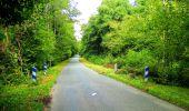 Randonnée Marche SAINT-JEAN-AUX-BOIS - en forêt de Compiègne_6_les Grands Monts_la route tournante sur la tête St-Jean - Photo 113